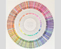 Crayola Colour Chart by Jamie Shovlin